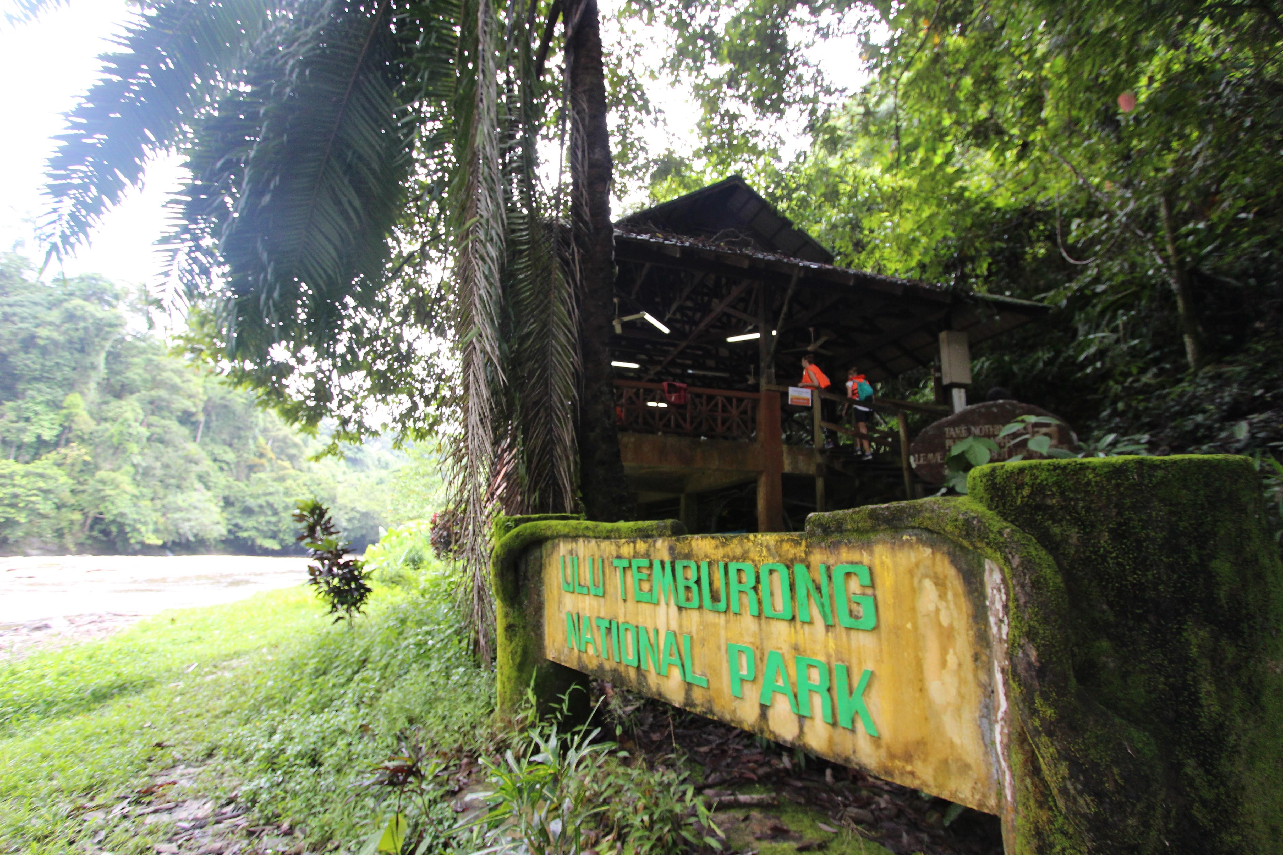 ブルネイ 1 : 熱帯雨林ツアー