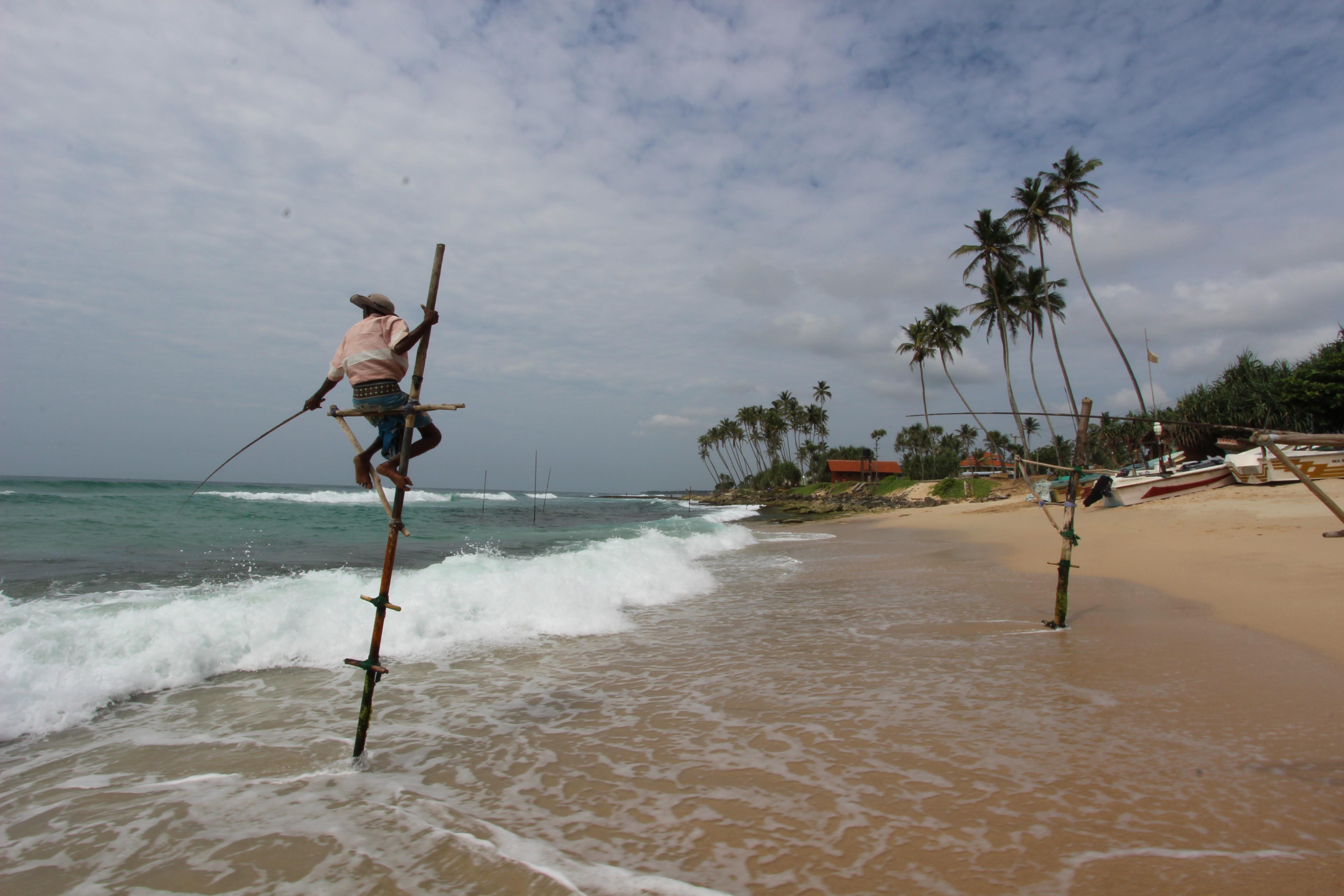 スリランカ : 友達とのんびり時間を楽しむ旅(4泊5日)