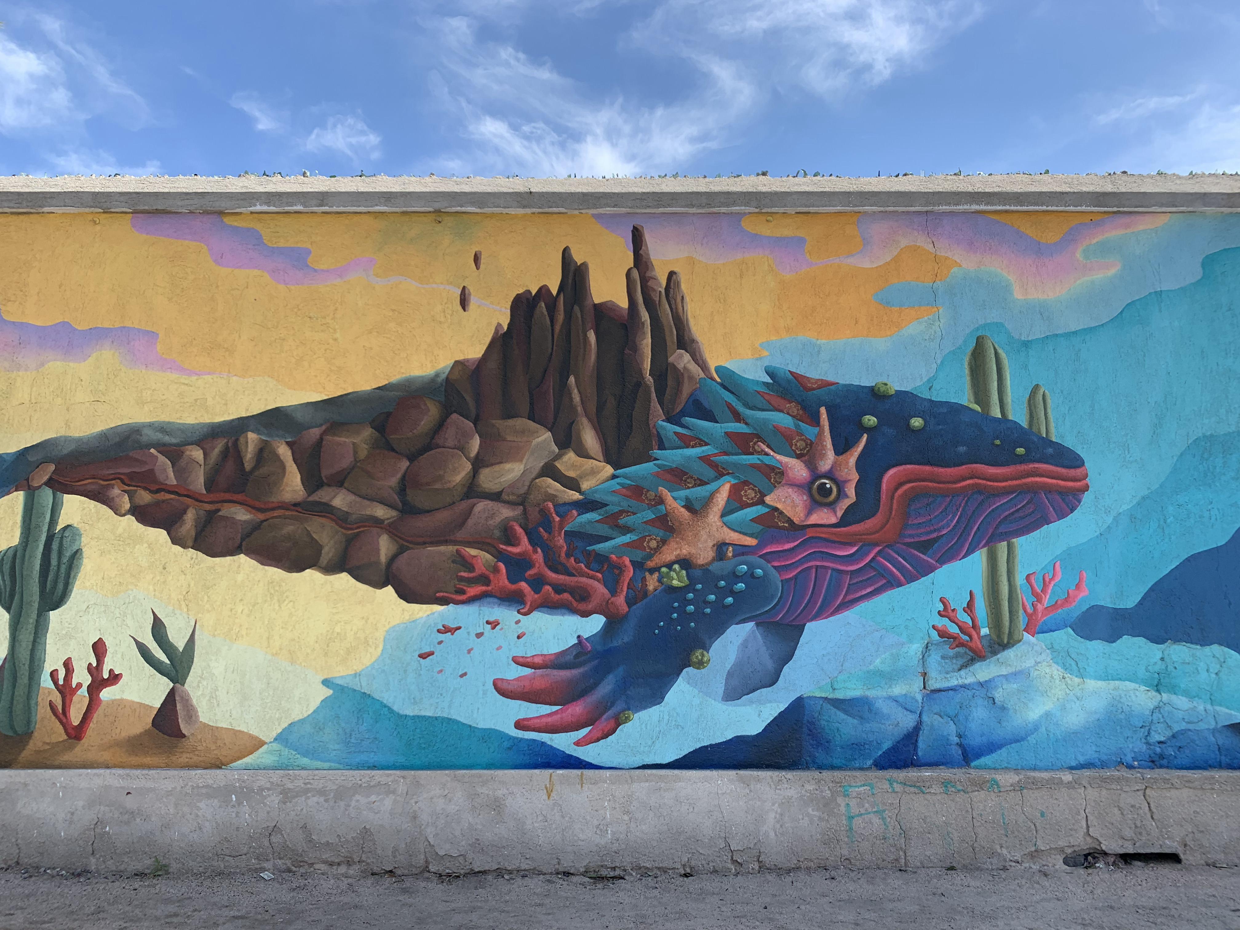 メキシコ 5 : ラパス散策